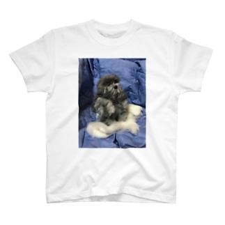 空飛びボム T-shirts