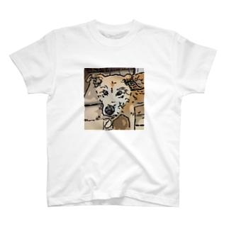 【保護犬/迷子犬】タロちゃん T-shirts