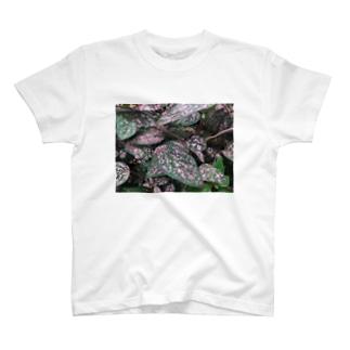 leaves printed shirt T-shirts