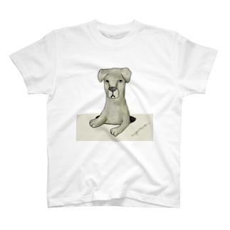 なしたの T-shirts