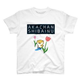 AKACHANSHIBAINU/赤ちゃん柴犬 T-shirts