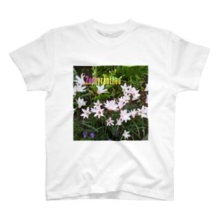 花の写真:ゼフィランサス Flower: Zephyranthes T-shirts
