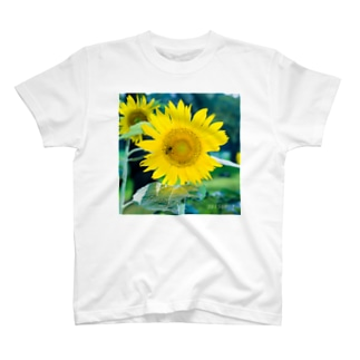 0801SunFlower T-shirts