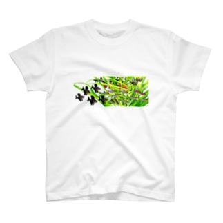 小型美麗熱帯魚と水草 T-shirts