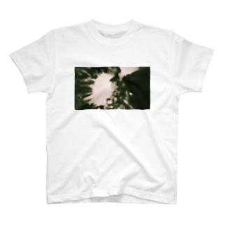 胞子爆発 T-shirts