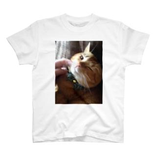 からしくん T-shirts
