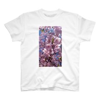 彼岸桜 T-shirts