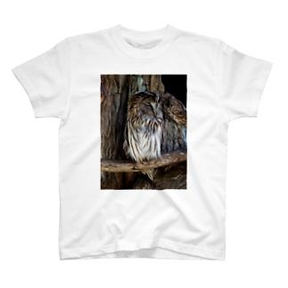 ふくろう01 油絵風 T-shirts