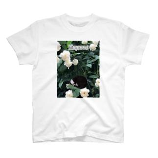 utatane DOPEY T-shirts