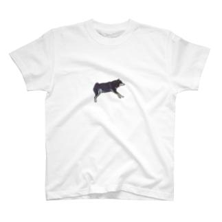 すやすや柴犬ゆきち T-shirts