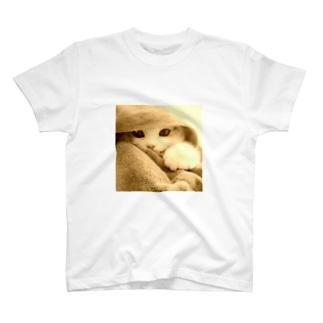 ごめんねこ。0115 T-shirts