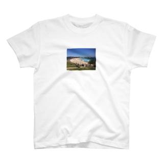 MI7TA9の海 T-shirts
