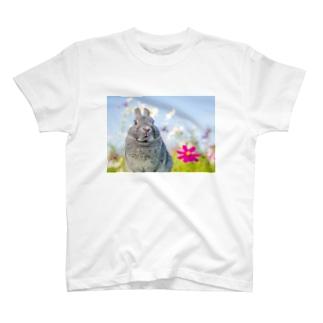 秋桜 T-shirts