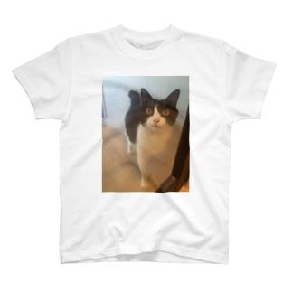 ガラスドア越しのりんごさん T-shirts