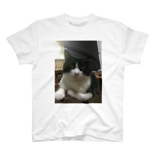 みののお腹に乗るりんごさん T-shirts