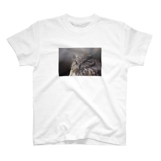 わしみみずく01|Eagle owl01|Photo by Toshi M T-shirts