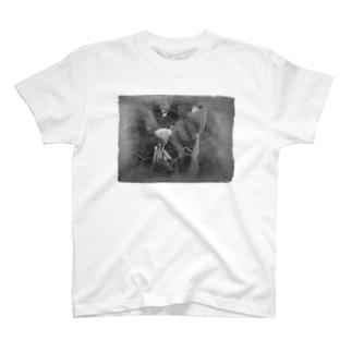 Kamakiri T-shirts