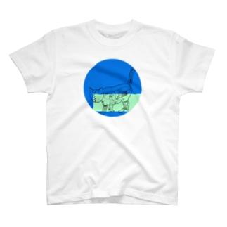 soysiocat T-shirts
