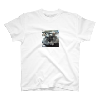 お友達~🎵Ⅲ T-shirts