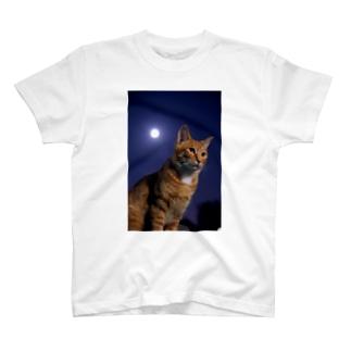 つきねこ 十五夜 T-shirts