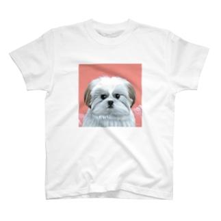 モコゾウ(顔) T-shirts