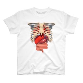 ORGANS T-shirts