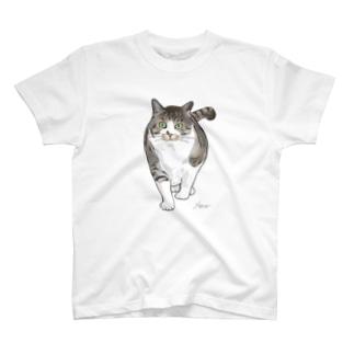 ぽっちゃり猫 ひ-たん T-Shirt