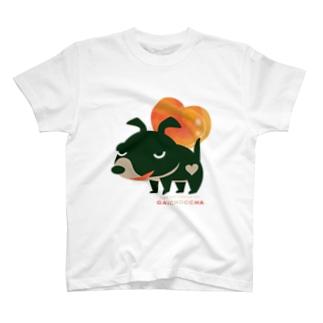愛してガイコッチャBB T-shirts