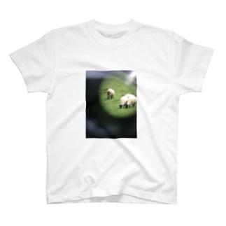 望遠鏡の羊 T-shirts