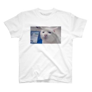 のら子 T-shirts