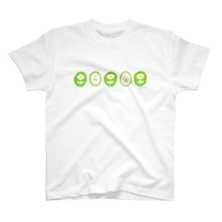 kimidori T-shirts