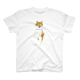 ヘロシナキャメラ売り場のちんころ T-shirts
