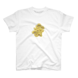 たくさんのキウイ T-shirts