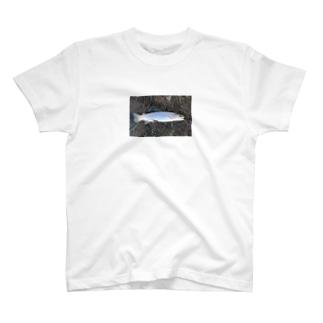 横たわる魚。 T-shirts