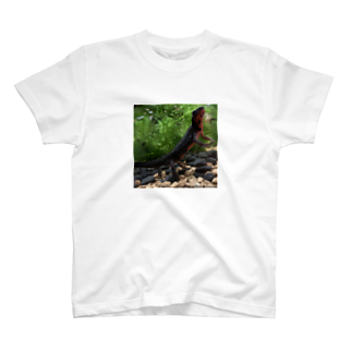 Kanjiのシリケンイモリ T-shirts