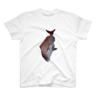 鯛 T-shirts