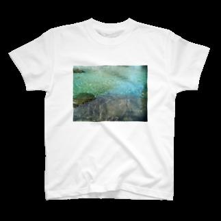 七色花面の秘境の水鏡プレゼント T-shirts