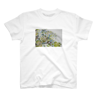 bonchan_gののんのはな? T-shirts