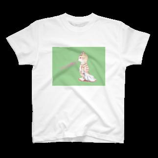 ARLECCHINIのねむいねこ2 T-shirts