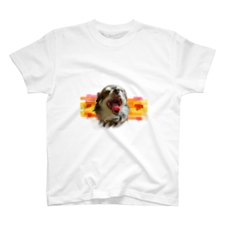OsKaのチロル T-shirts