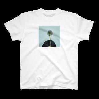 HANACHO-CHINのflowers T-shirts