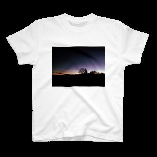 Sawarabi229の黄昏の木 T-shirts