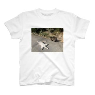 石巻市網地島のねこ T-shirts