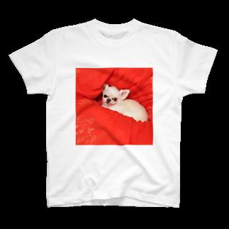 watashiyaの小鉄 T-shirts