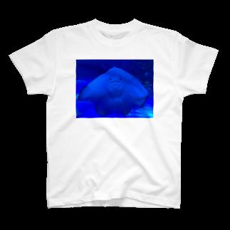 Kai410oooのエイちゃん T-shirts