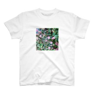 玄関のヒメツルソバ T-shirts
