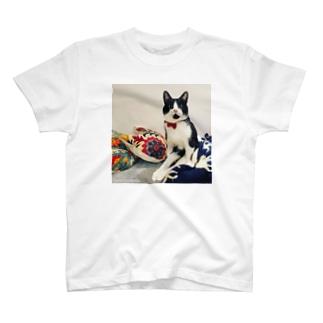こくらねこ部 にぃちゃんグッズ T-shirts