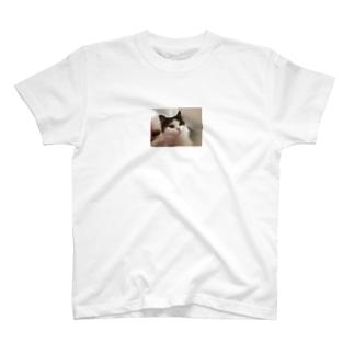 ミヌエットぽんずのポンちゃん T-shirts