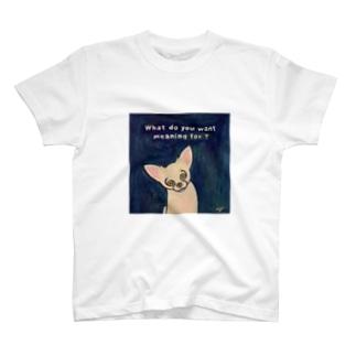 mojo T-shirts