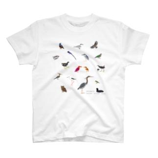 しまのなかま鳥類16(正方形展開) T-shirts